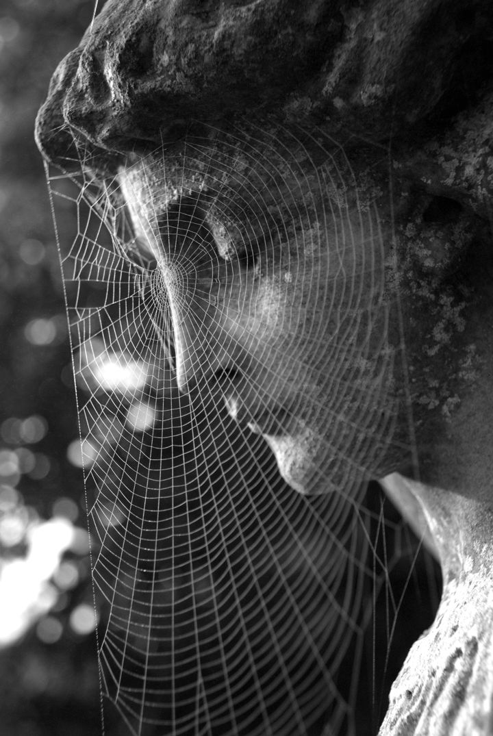 spider web on statue of woman