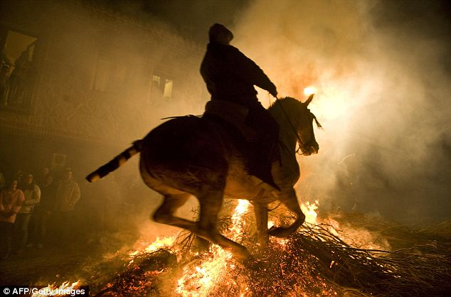 horse leaping bonfire